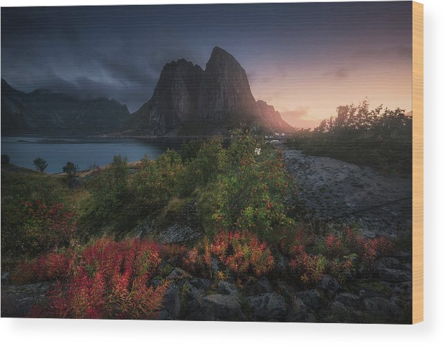 Norway Wood Print featuring the photograph Autumn Is Coming by Carlos F. Turienzo