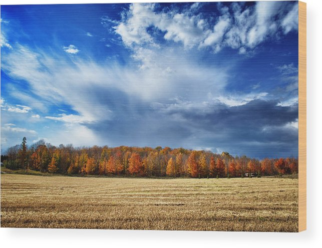 Door County Wood Print featuring the photograph Autumn Rain Over Door County by Ever-Curious Photography