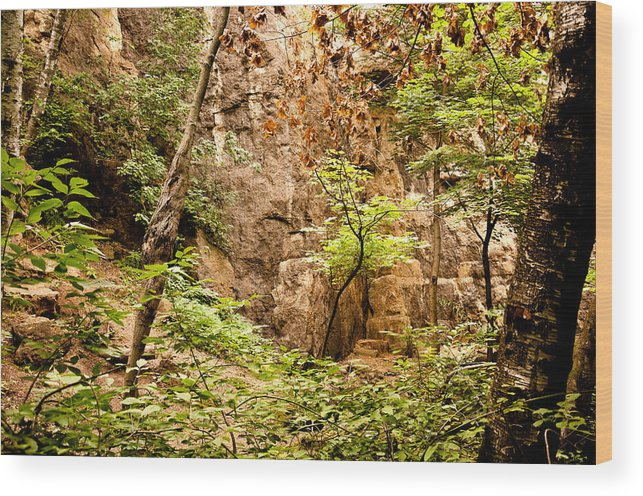 Barn Bluff; Bluff; Rock; Nature; Landscape; Redwing Wood Print featuring the photograph Barn Bluff by Lonnie Paulson