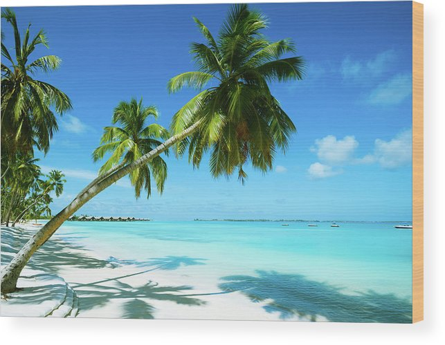 Water's Edge Wood Print featuring the photograph Beautiful Beach Resort by Phototalk