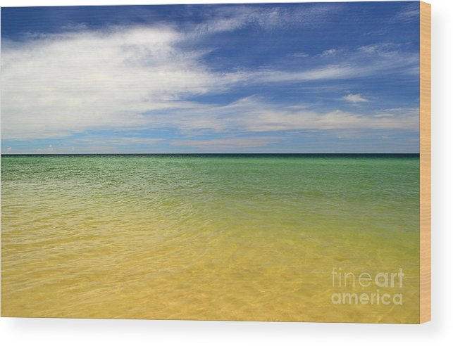 Landscape Wood Print featuring the photograph Beautiful St George Island Water by Holden Parker