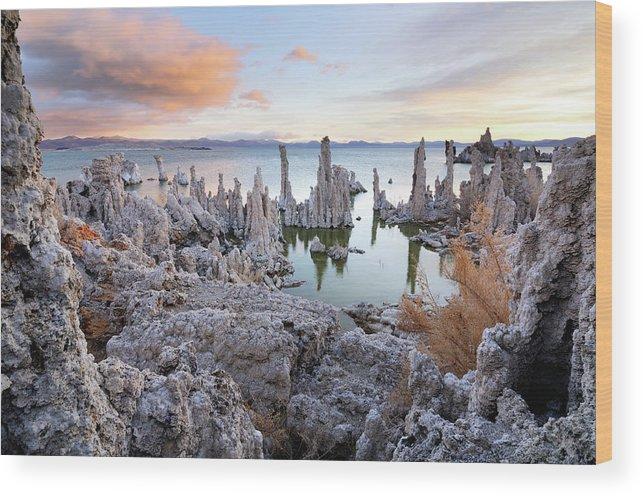 Water's Edge Wood Print featuring the photograph Big Cloud Above Tufas On Mono Lake by Rezus