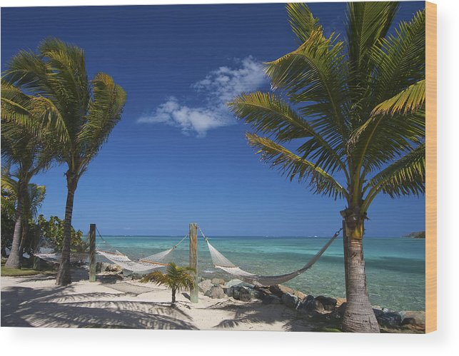 3scape Wood Print featuring the photograph Breezy Island Life by Adam Romanowicz