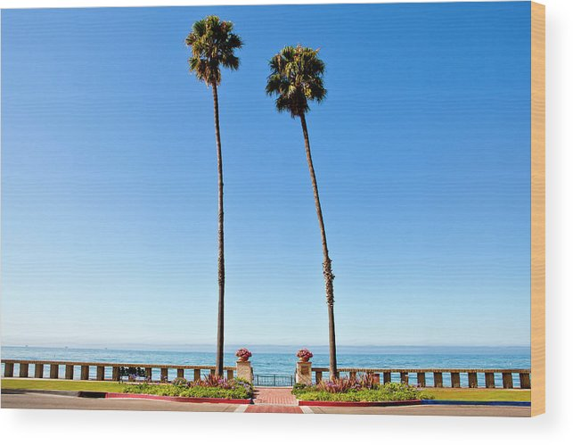 Tranquility Wood Print featuring the photograph Butterfly Beach, Santa Barbara by Geri Lavrov
