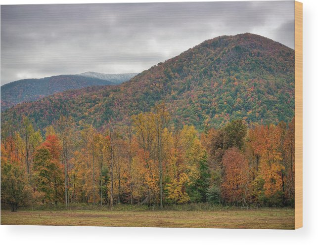 Scenics Wood Print featuring the photograph Cades Cove, Great Smoky Mountains by Fotomonkee