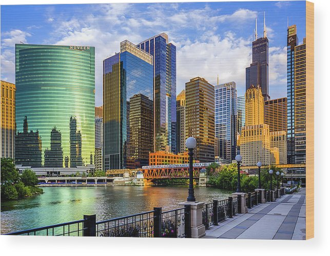 Chicago River Wood Print featuring the photograph Chicago River & Willis Tower by Carl Larson Photography