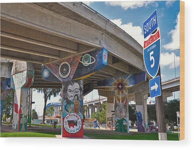 Color Wood Print featuring the photograph Chicano Park by Todd Hartzo