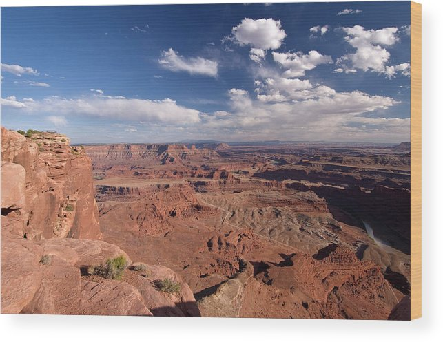 Scenics Wood Print featuring the photograph Colorado River Canyon From Dead Horse by John Elk
