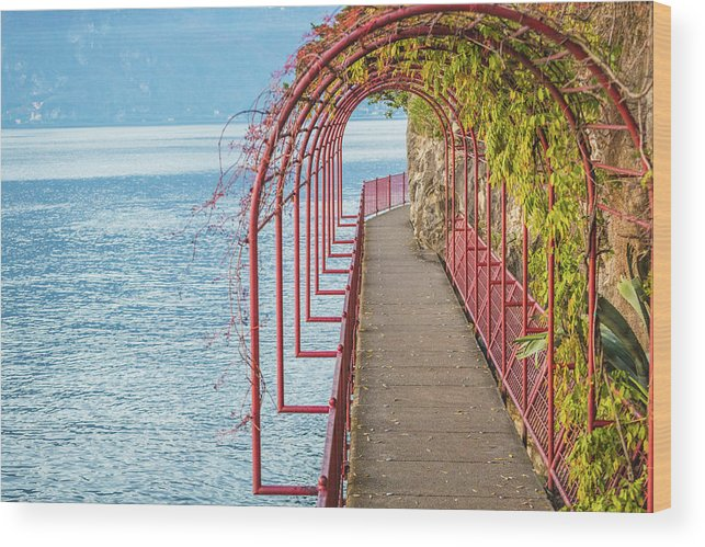 Non-urban Scene Wood Print featuring the photograph Como District Lake, Varenna by Deimagine