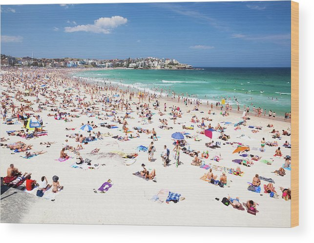 Water's Edge Wood Print featuring the photograph Crowded Bondi Beach, Sydney, Australia by Matteo Colombo