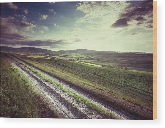 Steppe Wood Print featuring the photograph Dirt Track In Tuscany by Xavierarnau