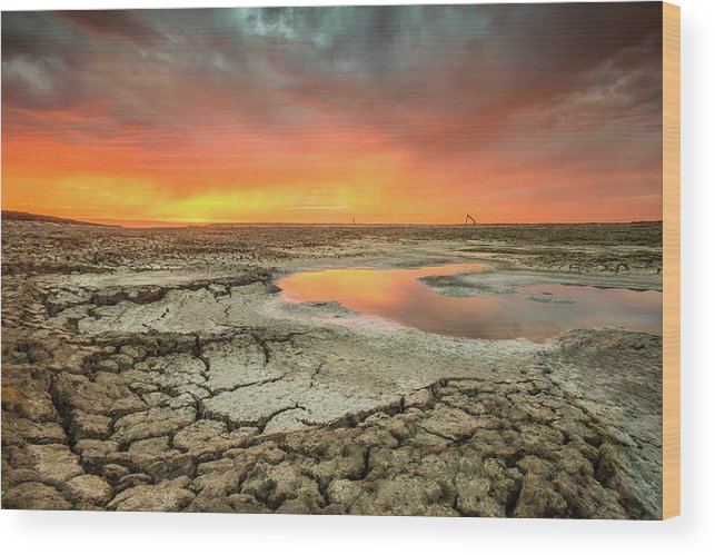 Tranquility Wood Print featuring the photograph Droughts Bane by Aaron Meyers