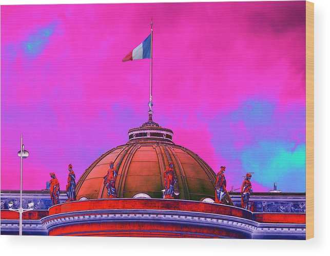 Dome Wood Print featuring the photograph French Dome Art by Richard Henne