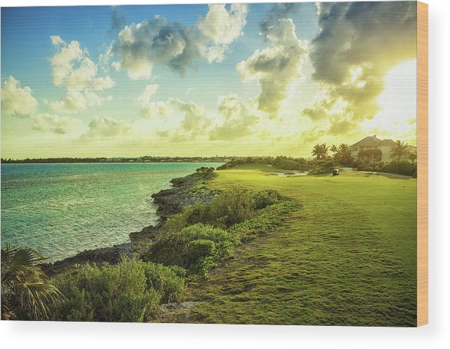 Scenics Wood Print featuring the photograph Golf Course by Chang