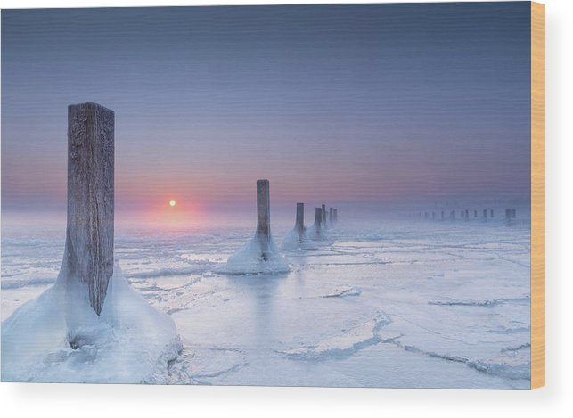 Lake Wood Print featuring the photograph Icy by Ulrike Eisenmann