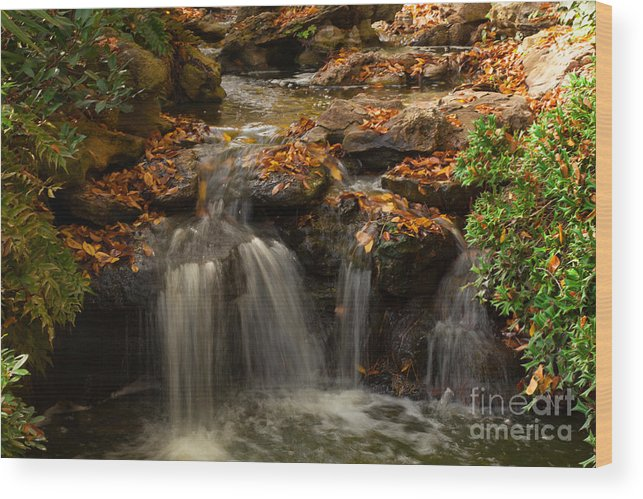 Landscape Wood Print featuring the photograph Little Waterfall in the Japanese Garden by Iris Greenwell