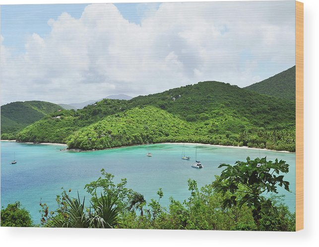 Scenics Wood Print featuring the photograph Maho Bay, St. John by Driendl Group