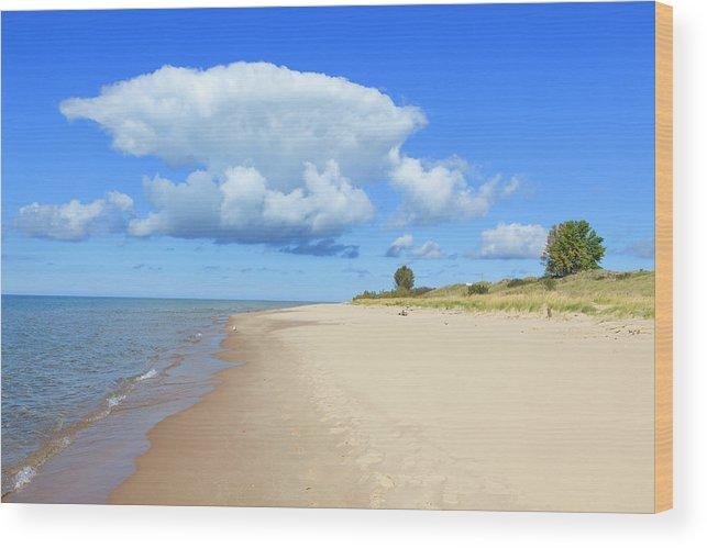 Lake Michigan Wood Print featuring the photograph Michigan Lake Shore by Espiegle