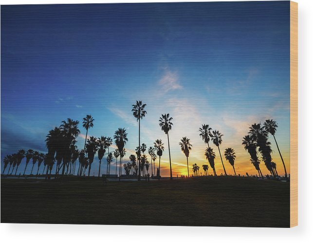 Shadow Wood Print featuring the photograph Muscle Beach At Dusk by Extreme-photographer