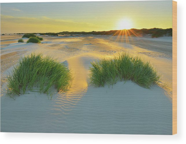 Scenics Wood Print featuring the photograph North Sea Sandbank Kniepsand by Raimund Linke