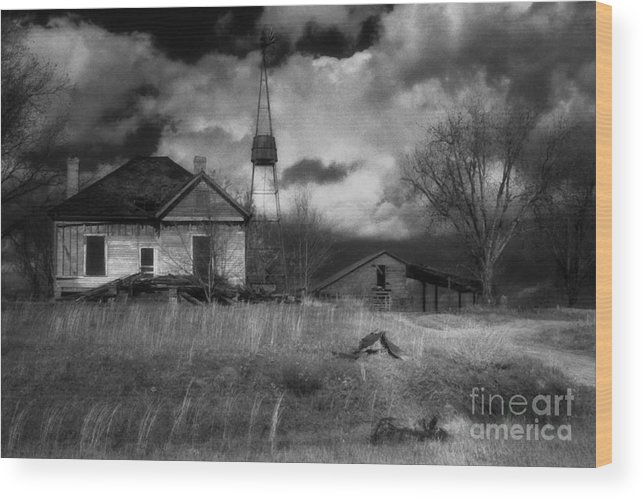 Farms Wood Print featuring the photograph Old Georgia Farm by Richard Rizzo