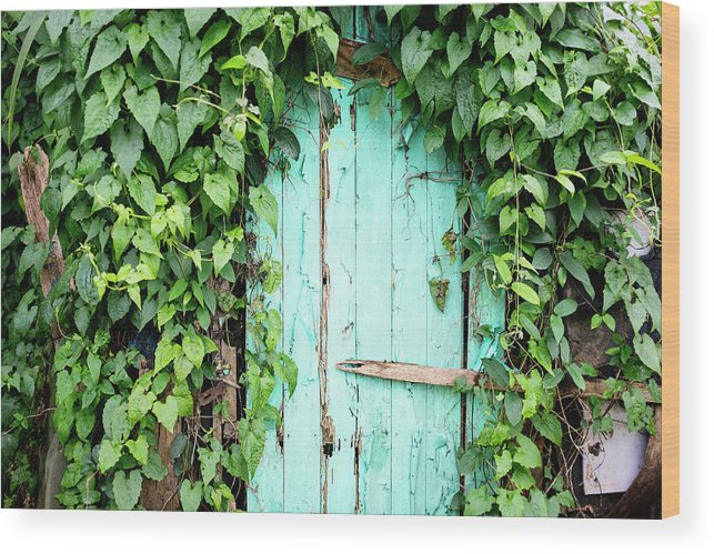 Outdoors Wood Print featuring the photograph Old Wooden Door by Real444