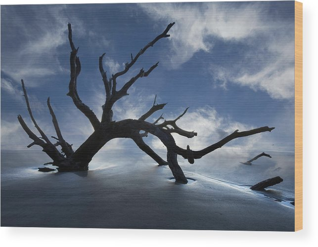 Clouds Wood Print featuring the photograph On A Misty Morning by Debra and Dave Vanderlaan