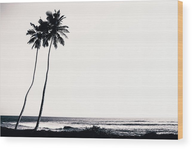 Empty Wood Print featuring the photograph Palm Trees And Beach Silhouette by Chrispecoraro