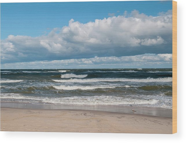 Water's Edge Wood Print featuring the photograph Poland, View Of Baltic Sea In Autumn At by Westend61