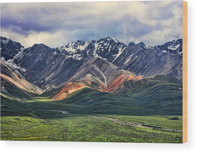 Polychrome Wood Print featuring the photograph Polychrome by Heather Applegate