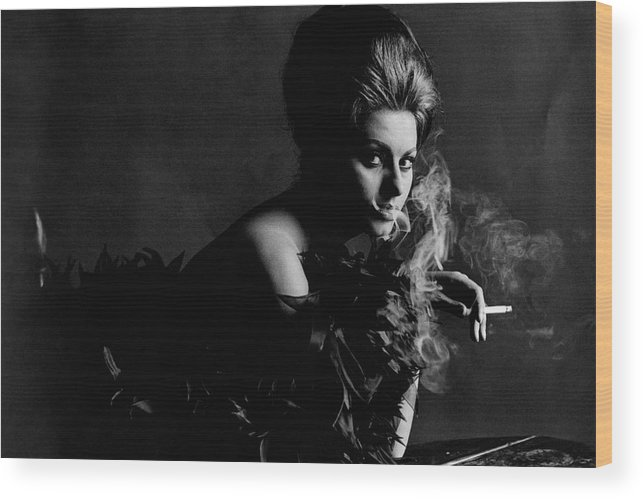 Actress Wood Print featuring the photograph Portrait Of Sophia Loren by Bert Stern
