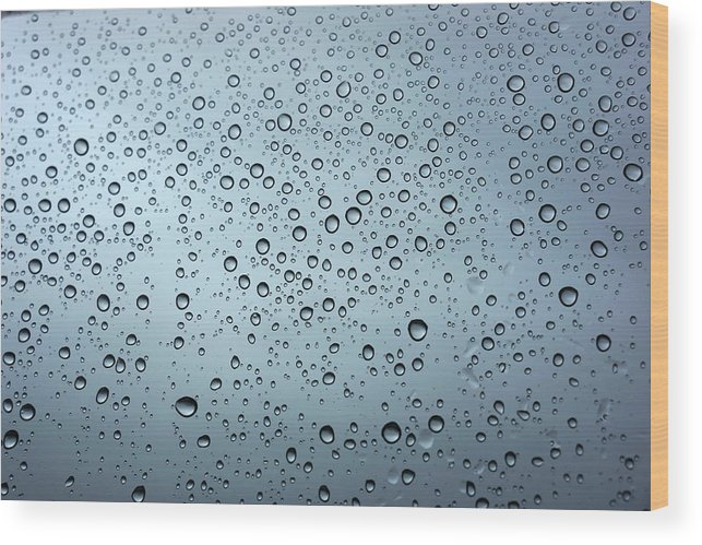 Horizontal Wood Print featuring the photograph Rainy Day Out by Nigel Killeen