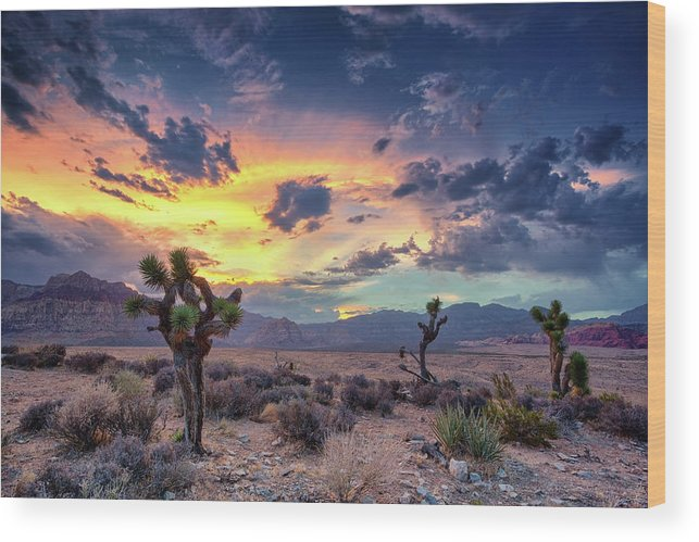 Scenics Wood Print featuring the photograph Red Rock Canyon by Eddie Lluisma
