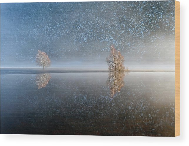 Scenics Wood Print featuring the photograph Reflections In A Lake In Winter, French by Jean-pierre Pieuchot