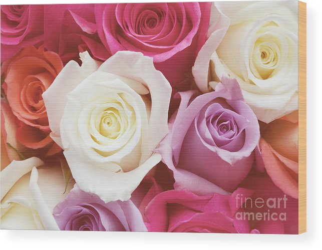 Romantic Flower Photo Wood Print featuring the photograph Romantic Rose Garden by Kim Fearheiley
