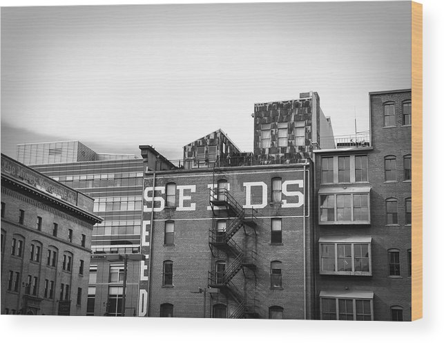 Black And White Wood Print featuring the photograph Seeds Building Two by Todd Hartzo