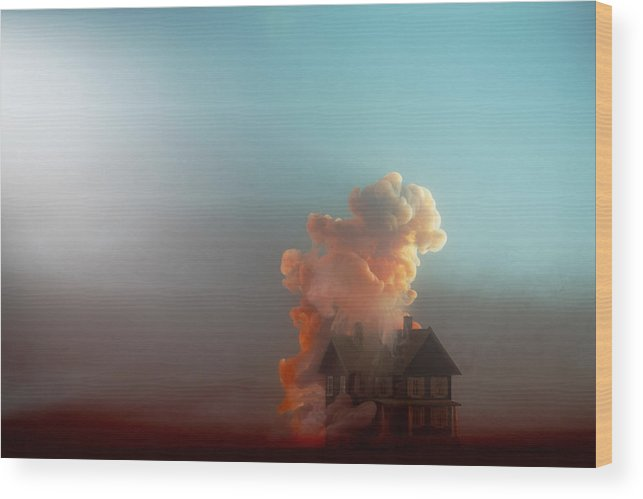 Model House Wood Print featuring the photograph Submerged House by Paul Taylor