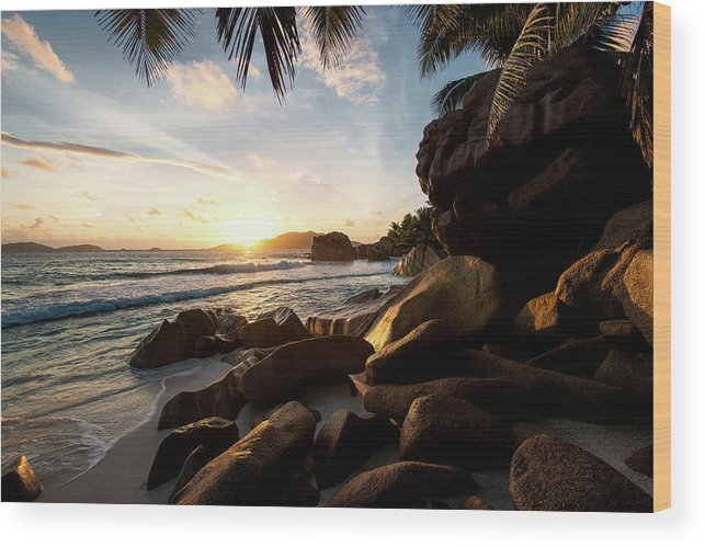 Water's Edge Wood Print featuring the photograph Sunrise Framed By Palm Trees And Rock by Pitgreenwood