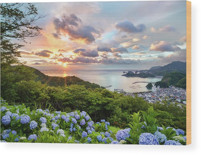 Tranquil Scene Wood Print featuring the photograph Sunset At Hydrangea Hills by Tommy Tsutsui