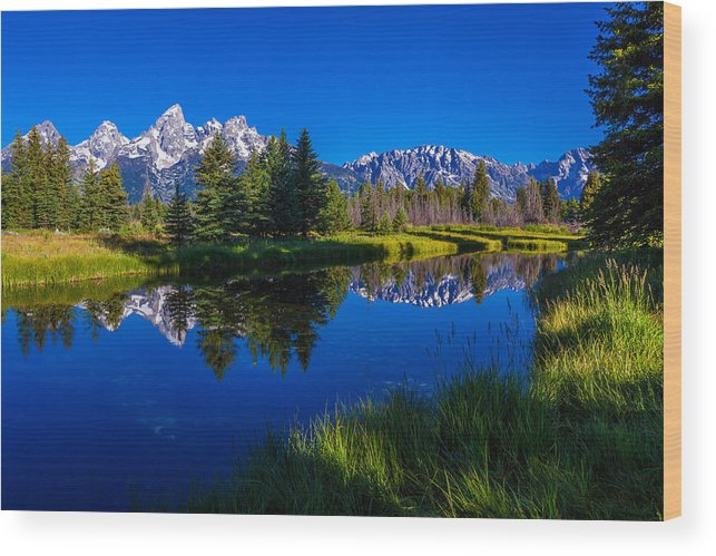 Teton Reflection Wood Print featuring the photograph Teton Reflection by Chad Dutson