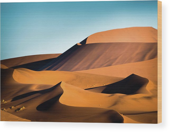 Sand Dune Wood Print featuring the photograph The Red Sand Dunes In Namibia by José Gieskes Fotografie