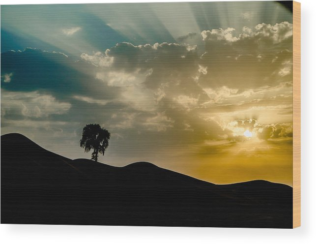 Wood Print featuring the photograph Uplifting Soul of Life by S M Hasan