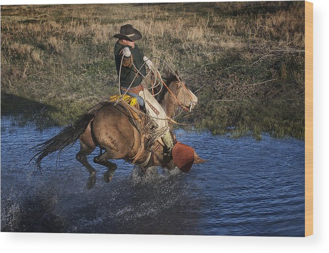 Horse Wood Print featuring the photograph Water Roper by Pamela Steege