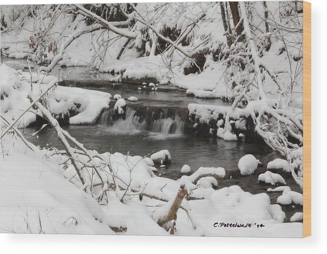 West Virginia Wood Print featuring the photograph West Virginia Winter by Carolyn Postelwait