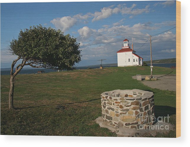 The Ring Wood Print featuring the photograph Don't Answer the Phone by Brenda Giasson