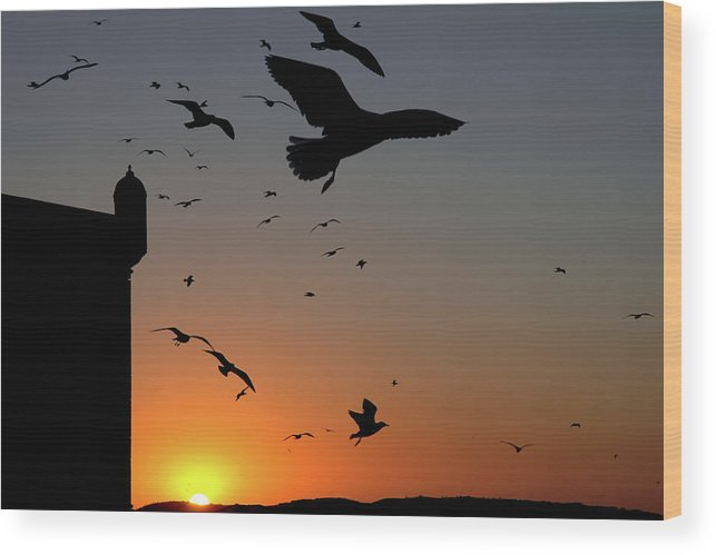 Morocco Wood Print featuring the photograph Moroccan sunset by John Banegas