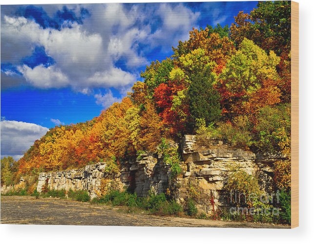High Cliff Wood Print featuring the photograph Nature's Arbor Bouquet by Ever-Curious Photography