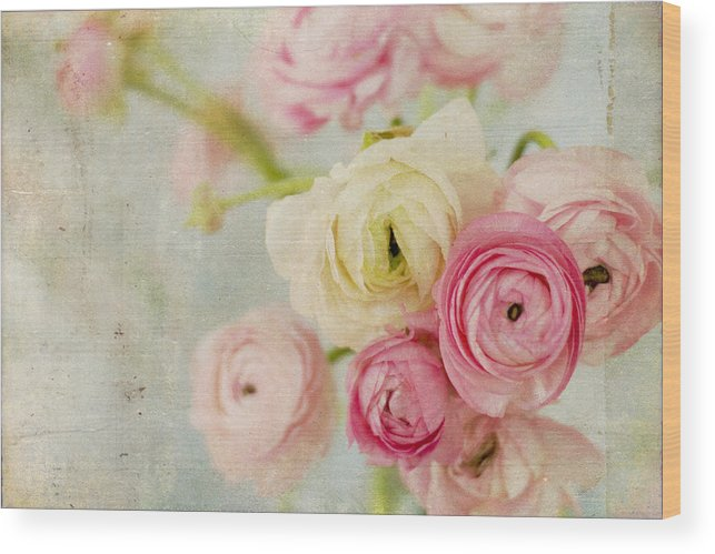 Ranunculus Wood Print featuring the photograph One Fine Day by Kristy Campbell