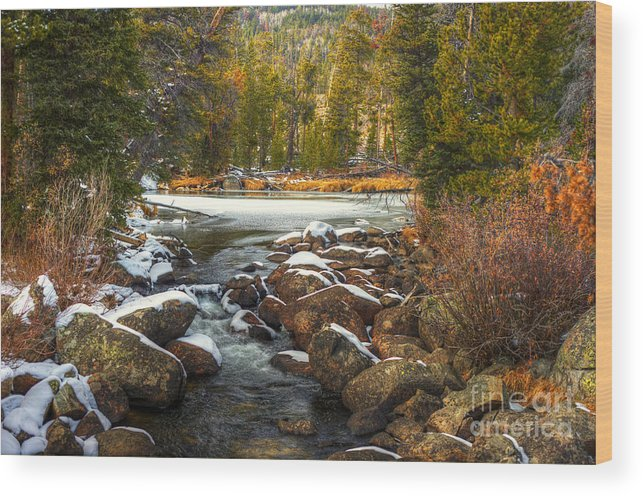 Places Wood Print featuring the photograph Popo Agie River in Autumn by Dennis Hammer
