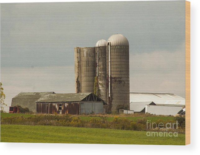 Farm Wood Print featuring the photograph Rural Country Farm by Darleen Stry